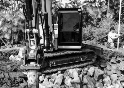 New Recent King Excavation Photos