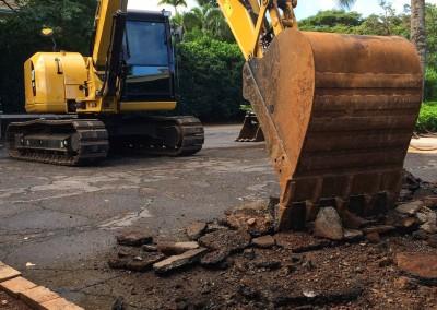 Recent King Excavation Photos